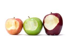 Äpplen med tuggan Royaltyfri Bild