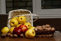 Äpplen med valnötter i en vit korg på en trätabell Närbild Äpplen och valnötter på tabellen Royaltyfri Bild
