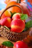 Äpplen med vattendroppar i korgen Royaltyfri Bild