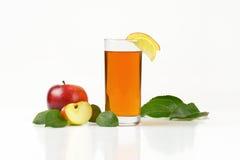 Äpplen och äppelmust Royaltyfri Bild