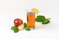 Äpplen och äppelmust Fotografering för Bildbyråer