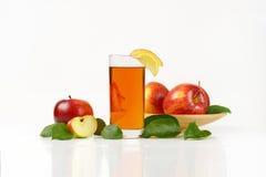 Äpplen och äppelmust Royaltyfria Bilder