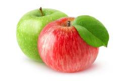 Äpplen och apelsiner Fotografering för Bildbyråer
