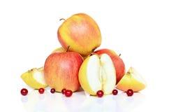 Äpplen och cranberries Arkivfoton