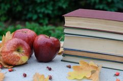 Äpplen och en bunt av böcker Höstnaturmort Time som ska läsas Royaltyfria Foton