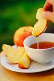 Äpplen och honung Arkivfoton