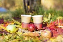 Äpplen och kaffekoppar i höst parkerar Arkivfoto