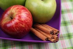 Äpplen och kanelbruna pinnar i en bunke Royaltyfria Bilder