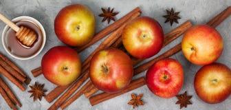 Äpplen och kanelsticks Royaltyfria Foton