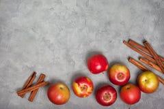 Äpplen och kanelsticks Fotografering för Bildbyråer