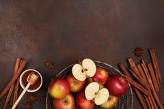 Äpplen och kryddor Fotografering för Bildbyråer