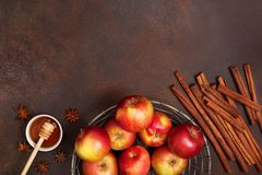Äpplen och kryddor Royaltyfri Bild