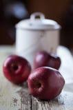Äpplen och mjölkar hinken Arkivfoto