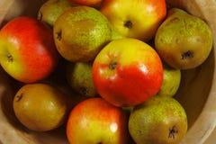 Äpplen och pears Arkivfoton