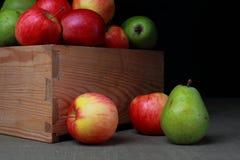 Äpplen och pears Fotografering för Bildbyråer
