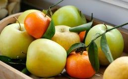 Äpplen och tangerin i trämagasin Royaltyfria Bilder