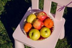 Äpplen och tangerin som ligger i en bunke på children& x27; s-stol Royaltyfria Foton