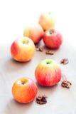 Äpplen och valnötter Royaltyfri Foto
