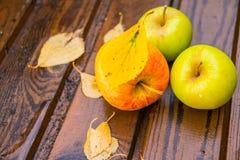 Äpplen och vattendroppar på trätabellen Skörd av äpplen Saftiga äpplen på tabellen isolerad white för höst begrepp Äpplen på ett  Arkivfoto