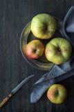 Äpplen på den mörker skrapade bakgrundslodlinjen Fotografering för Bildbyråer