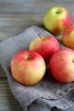 Äpplen på en servett Fotografering för Bildbyråer