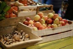 Äpplen på marknaden Royaltyfri Bild