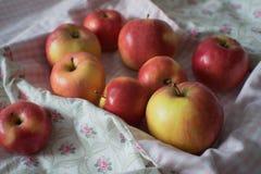 Äpplen på textilen Fotografering för Bildbyråer