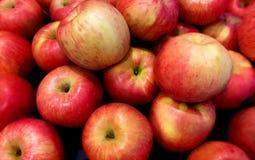 äpplen pile red Arkivbild