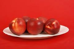 äpplen plate red Royaltyfri Fotografi
