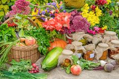 Äpplen, rädisa, morötter, inlagda grönsaker, pumpor och blomma Royaltyfri Fotografi