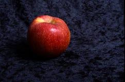 äpplen ser härliga och läskiga royaltyfri bild