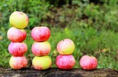 Äpplen som är ordnade i ett diagram Royaltyfri Fotografi