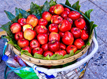 Äpplen som är till salu i korgen Royaltyfria Foton