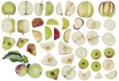 Äpplen som element för design Arkivfoton