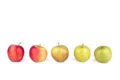 Äpplen som i rad står på vit isolerad bakgrund Arkivbilder