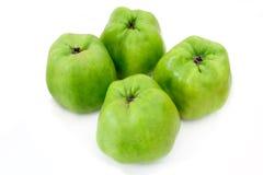 äpplen som lagar mat fyra gröna isolerade organiska Arkivfoton
