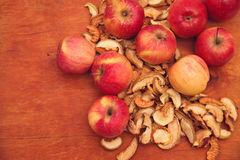 äpplen torkade nytt Fotografering för Bildbyråer