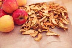 äpplen torkade nytt Royaltyfria Bilder