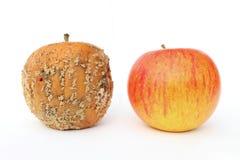 äpplen två Royaltyfri Fotografi