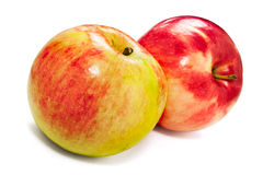 äpplen två Royaltyfri Foto