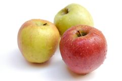 äpplen våt ii Arkivbild
