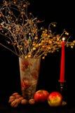 Äpplen, valnötter, exponeringsglas av vin och vas av blommor på svart bakgrund Arkivbild