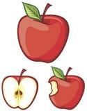 äpplered royaltyfri illustrationer