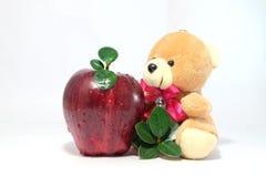 äpplesidor och nallebjörn royaltyfri bild