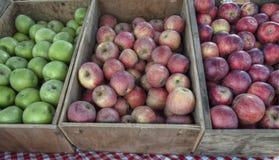 äpplespjällådor Royaltyfri Fotografi