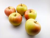 äpplestart som mognar royaltyfria foton