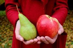 Äpplet för händer för zholtye för höstsidor täcker det röda och gräsplanpäronet kvinnan arkivfoton