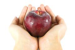 äpplet ger handred Royaltyfri Bild
