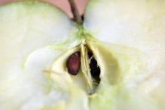 äpplet kärnar ur Royaltyfri Foto