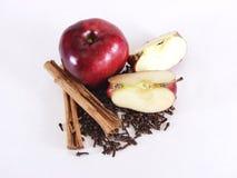 äpplet sections hela kryddor Royaltyfri Fotografi